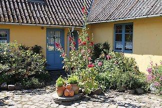 Apartament Birkelund