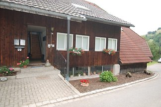 Holiday flat family holiday Kleines Wiesental