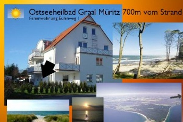 Graal Müritz Strand Ostsee700m in Graal-Müritz - Bild 1