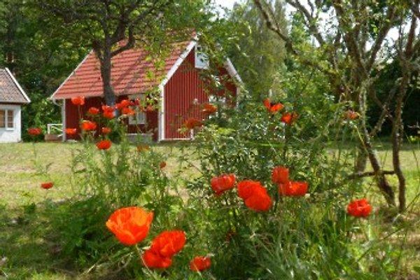 Haus in Smaland en Torsås - imágen 1