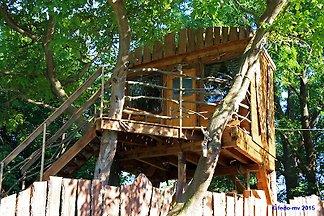 Maison de vacances à Dahmen
