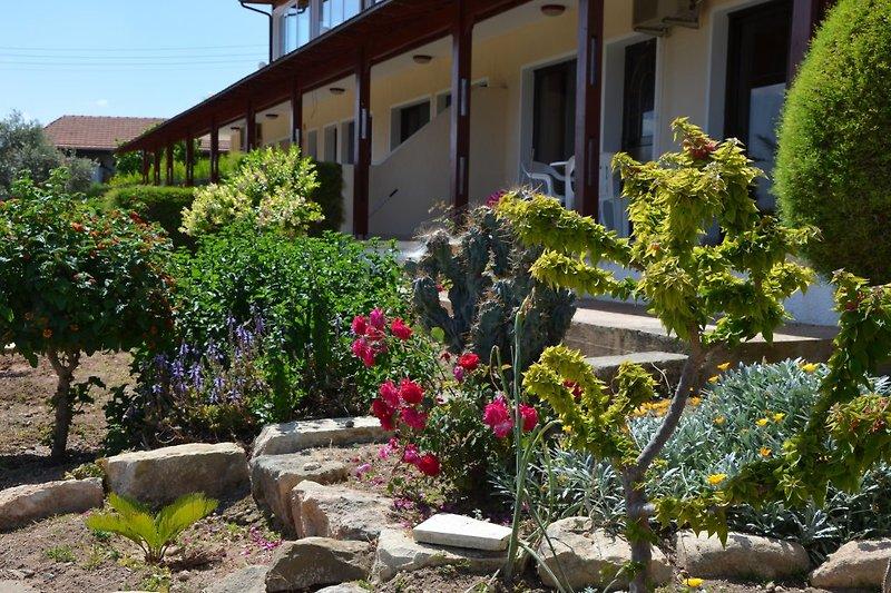Ayia Zoni: liebevoll angelegter vor der Apartment-Terrasse