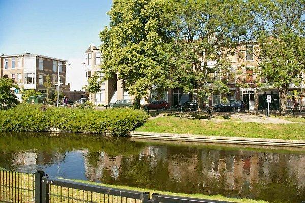 Kussengevecht Valkenboskade à Den Haag - Image 1