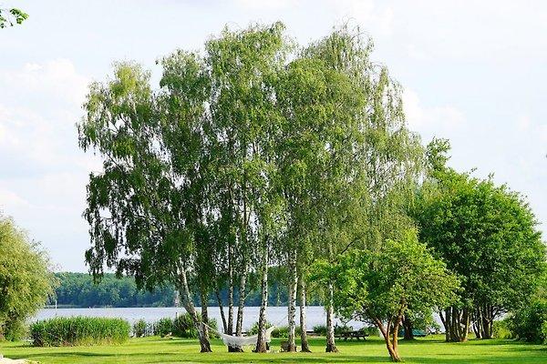 Stilvolles Ferienhaus am See in Heidesee - immagine 1