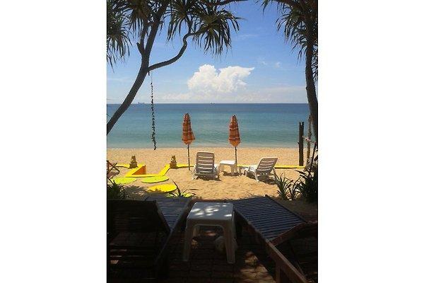 LAntaPaloma Beach Studios &Bungalow in Koh Lanta - Bild 1