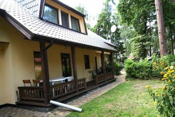 Lotosdom in Pobierowo - Bild 1
