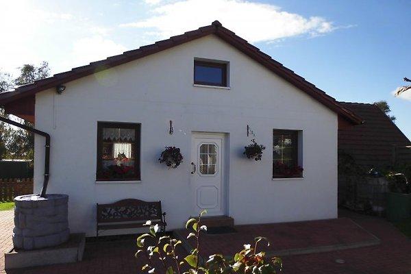 Kleines Ferienhaus Heyne in Rerik - Bild 1