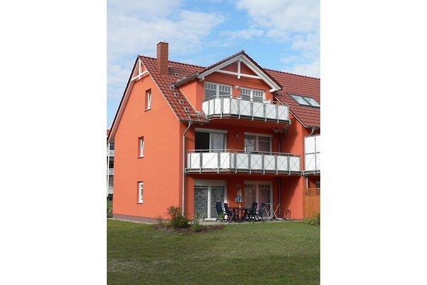 Ferienwohnung Bartel à Koserow - Image 1