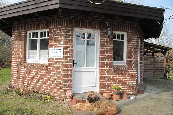 Haus Kranichwinkel à Dargow - Image 1