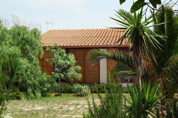 Villa Gelso - sud-est Sicilia in Pachino - immagine 1