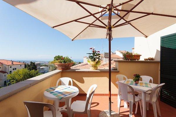 appartements Nonno Alberice à Rosignano Marittimo - Image 1
