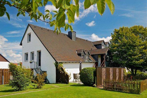 2Eifel-Mosel***Fewo, Maarsee  en Oberscheidweiler - imágen 1