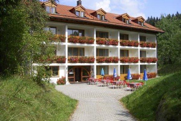 Hotel Pfeiffermühle in Wertach - immagine 1