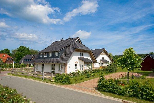 Ferienhäuser Pendorf