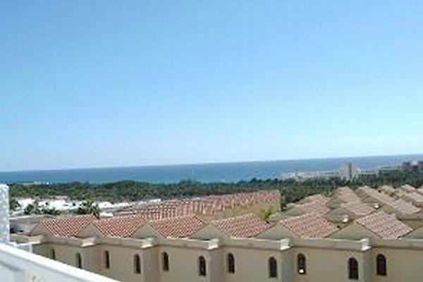 HIBISCUS II - A18 - 565 à Costa Calma - Image 1