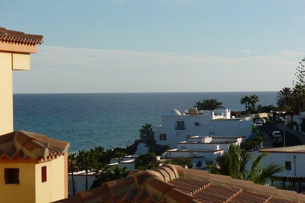 Komfort-Appartement ULTRA TRES 23  in Costa Calma - Bild 1