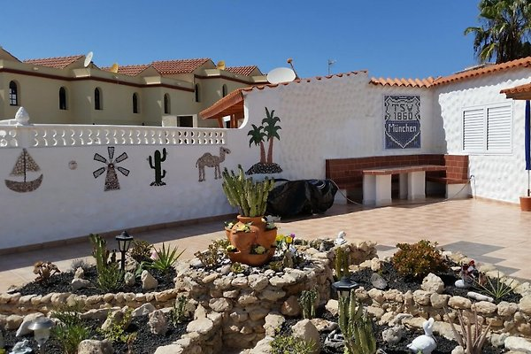 Bungalow CHRISTA B7 in Costa Calma - immagine 1