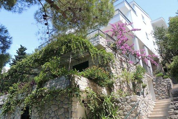 Apartmani Pervan in Brela - immagine 1