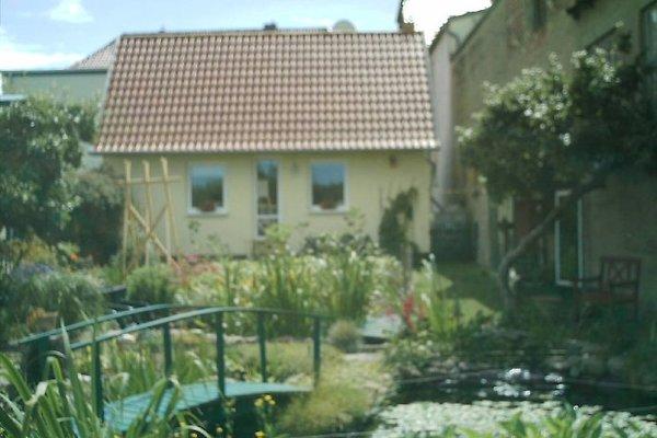 Ferienhaus in Bad Doberan en Bad Doberan - imágen 1