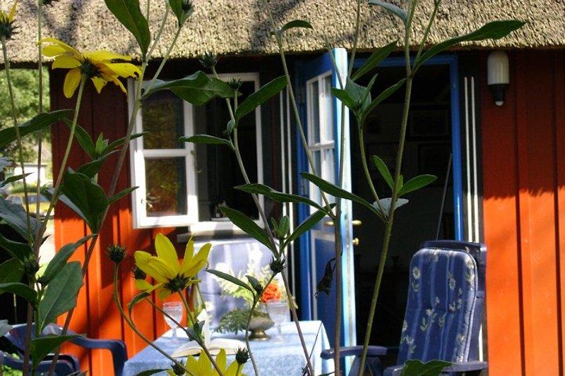 Sonnige Terrasse mit Gartenmöbel .