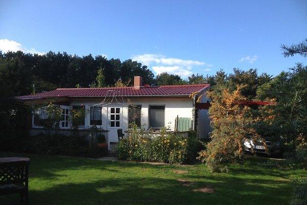 Ferienhaus Ahrenshoop in Ahrenshoop - immagine 1