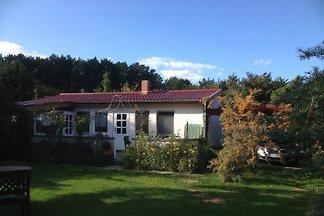 Domek letniskowy Ferienhaus Ahrenshoop