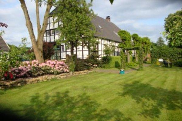 Ferme Maison Wullmoor  à Lingen (Ems) - Image 1