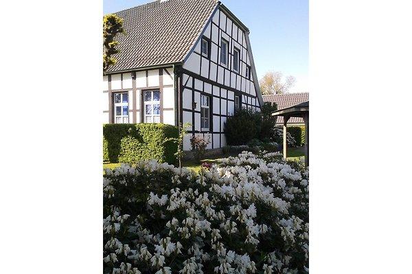 ferienhof haus wullmoor ferienwohnung in lingen ems mieten. Black Bedroom Furniture Sets. Home Design Ideas