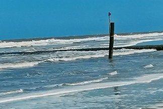 Strandkorb-Norddeich