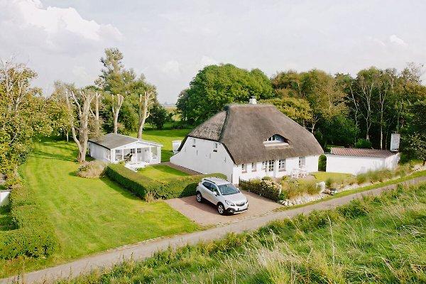 Blick vom Deich auf unser Ferienhaus