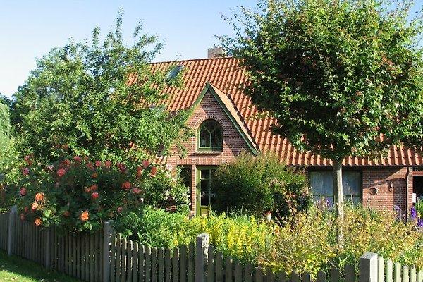 Ferienhaus   à Osterhever - Image 1