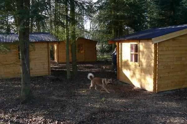 Cabane à Manhagen Grömitz - Image 1
