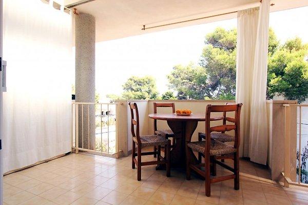 Apartamento Miquel Ange à Colonia deSant Jordi - Image 1
