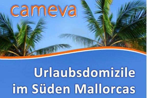 Firma  Cameva Urlaubsdomizile