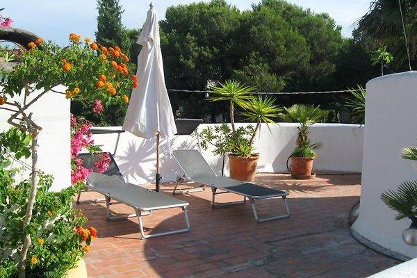 Casa Serena in Colonia deSant Jordi - immagine 1