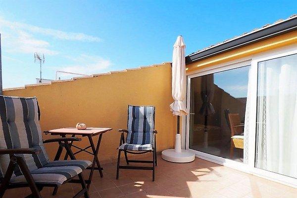 Ferienwohnung Penthouse Petit in Colonia deSant Jordi - Bild 1