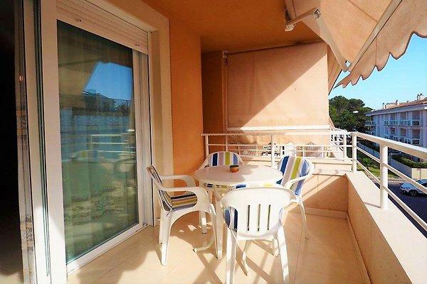 Apartamento Mar y Playa in Colonia deSant Jordi - immagine 1