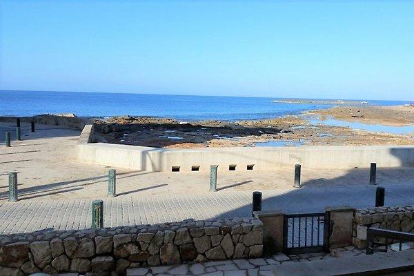 Mar Blau in Colonia deSant Jordi - Bild 1