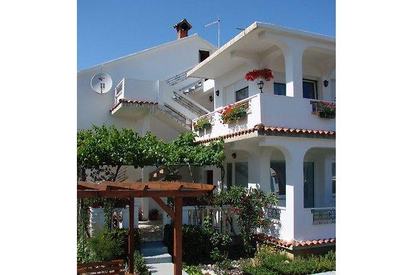 Lopar Lovro Appartements  à Lopar - Image 1