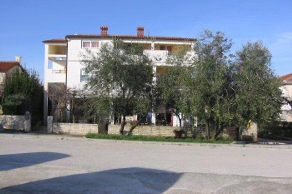 Appartamento 2 / C in Banjole - immagine 1