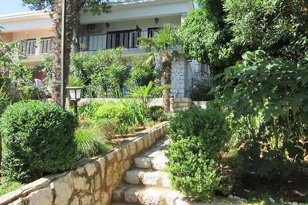 Appartamento Ana Marcelja in Novi Vinodolski - immagine 1