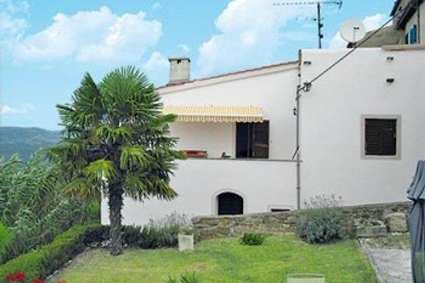 Casa Milla en Motovun - imágen 1