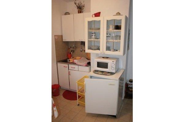Apartments Elsa in Drage - Bild 1