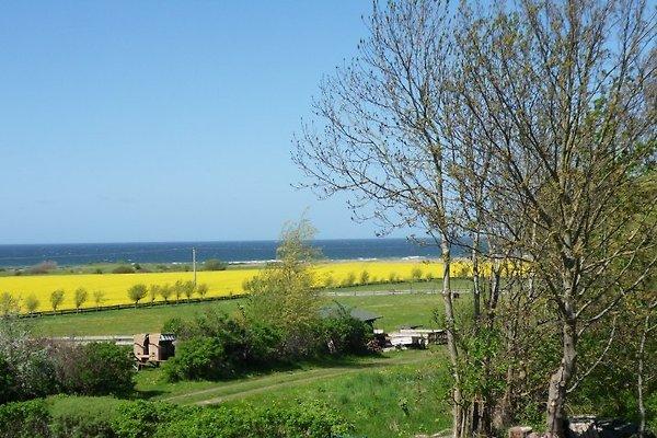 Blick auf die Ostsee vom Haus aus