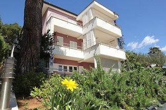Die Ferienwohnungen der Villa Adrian befinden sich in Borik (=Pinienwald), einem ruhigen und sehr schoenen Rovinjer Stadtteil. Bis zum Strand sind es nur 2-3 Gehminuten.