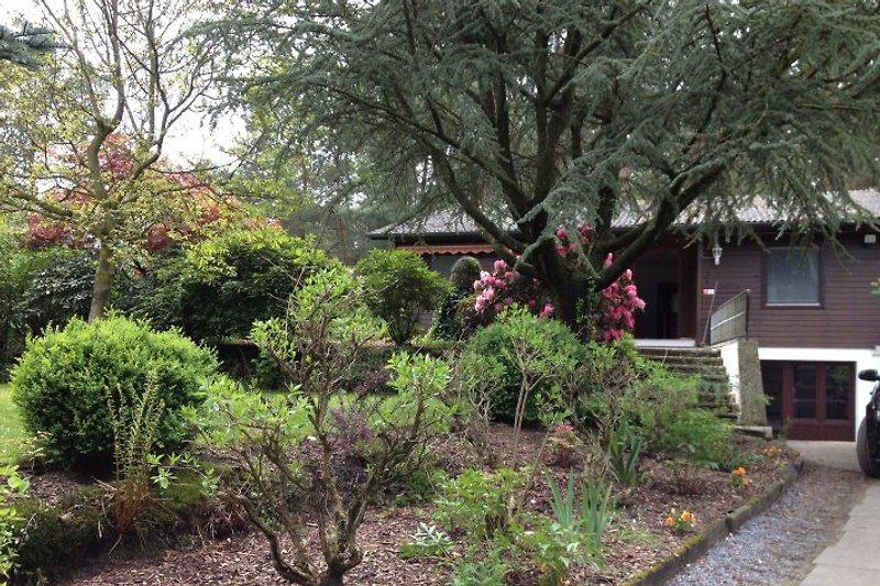 Das große Waldhaus