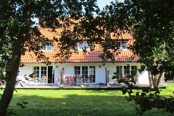 Hus Hiddensee 1, Vitte en Vitte - imágen 1