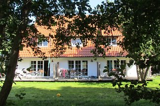 Hus Hiddensee, Vitte