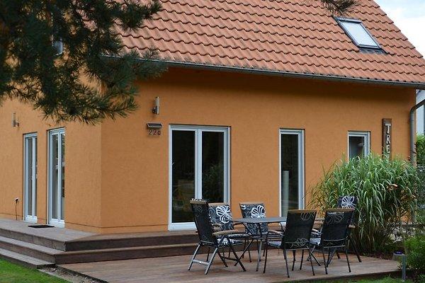 Ferienhaus Treibholz in Prerow - immagine 1