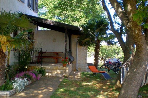 Appartamento Eva A2 in Medulin - immagine 1